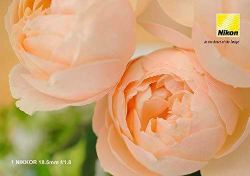 『Nikon 単焦点レンズ 1 NIKKOR 18.5mm f/1.8 シルバー ニコンCXフォーマット専用』の3枚目の画像