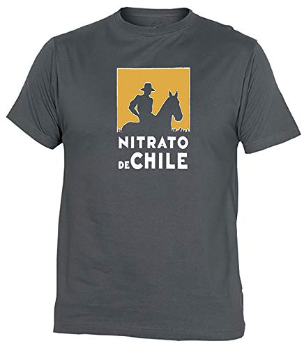 Camiseta Nitrato De Chile Adulto/niño EGB ochenteras 80´s Retro (XL, Gris)