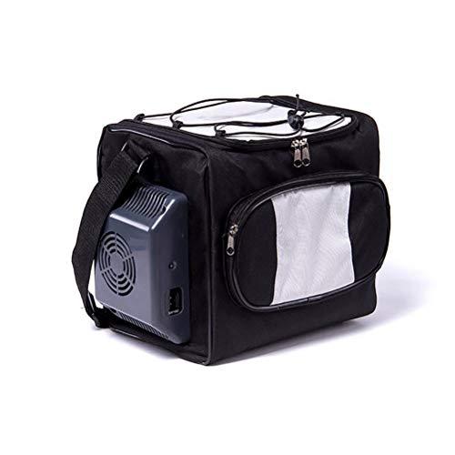 Réfrigérateur personnel compact portable mini refroidit, refroidisseur de voiture 12L électronique portable de voiture Hot Box réfrigérateur pour double usage pour voiture