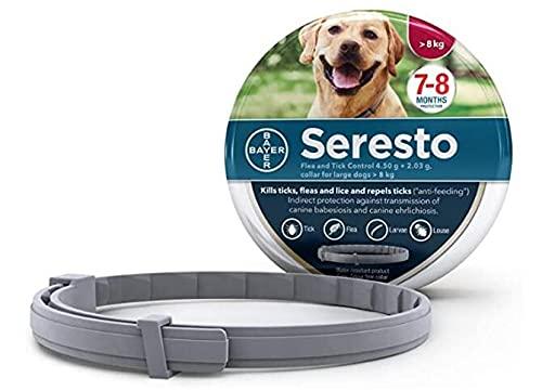 Collare Cani 8kg, Collari di prevenzione di 8 mesi Taglia unica Oltre 18 libbre