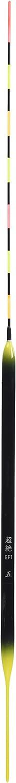 Float transcendence (EF1) 5 No. latest LED electric night game spatula float separately