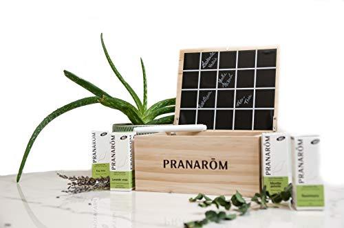 Pranarôm - Coffret Aromathérapie - 4 Huiles Essentielles Bio - Ravintsara - Tea-Tree - Lavande Vraie - Menthe Poivrée - Aromathèque 20 Flacons Offerte