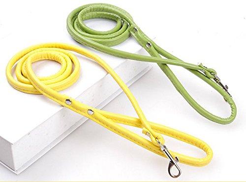 MASUNN Cat specials kleine en middelgrote honden en honden touw huisdier PU simulatie leer enkele tractie riem