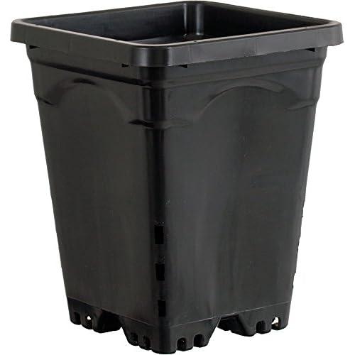Active Aqua HG6X6SB Vaso Quadrato, 15x15 cm, Altezza 20 cm, 50 per Confezione, Nero