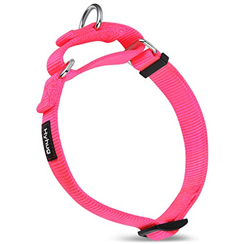 Walking Collars for Dogs