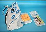 AMITD Laparoskopie-Simulator Laparoskopische Trainer-Simulator-Box Für Lehre Und Training, 4 Trainingsmodell, Gerade Professionelle Kamera