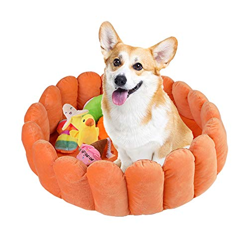 laamei Cat Bed, Cat Round Fruit Tart Bed Whith Chew Toys for Fun Cute Soft Larger Plush Pet Bed Mattress for Cats Dogs Mat Pad