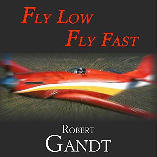 Fly Low, Fly Fast  By  cover art