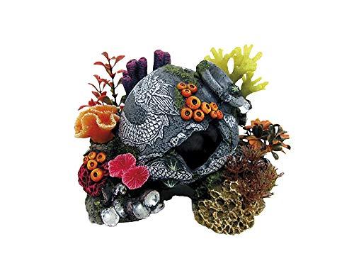 Nobby 28611 Décoration pour Aquarium KRUG avec Plantes 22 5 x 16 cm 0 x 16 cm