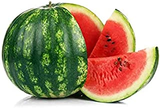 Watermelon Morocco | More Pulp & Juicy | Highly Nutritious | Rich and Pleasant Flavor | Healthy & Slightly Sweet | Premium...