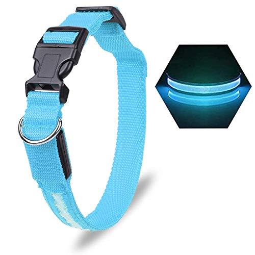 Yolistar Collar LED Perro, 3 Modos Collar Perro Luz con Recargable y Impermeable Tamaño Ajustable para Perros Pequeños/Medianos/Grandes