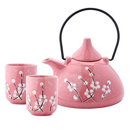Panbado Juego de té chino de porcelana Gongfu Kungfu, flor de ciruelo...
