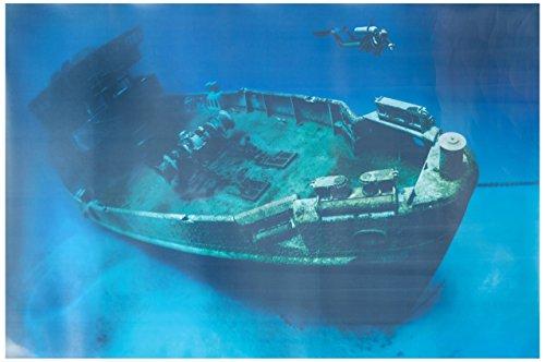 Pen Plax BGC1 Cling-On Shipwreck Aquarium Background, 24
