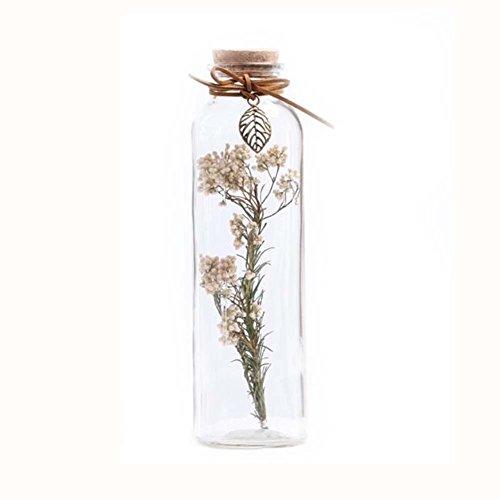 Black Temptation DIY Flores secas deseando Botellas decoración de Vidrio Botella # 2