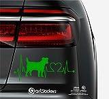 Artstickers Pegatinas para Coche con Forma de Perro Jack RUSELL Terrier, 20 cm, para Amantes de los Coches. Color Verde. Pegatina Perro latidos corazón. Regalo Adhesivo Spilarts, Marca Registrada