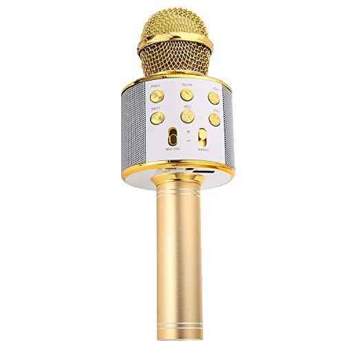 Altavoz Con Karaoke  marca Manricle