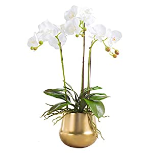Fudostar Artificial Silk Moth Orchid Flowers Potting in Matte Gold Ceramic Vase, Natural Looking Phalaenopsis Flowers and Greens