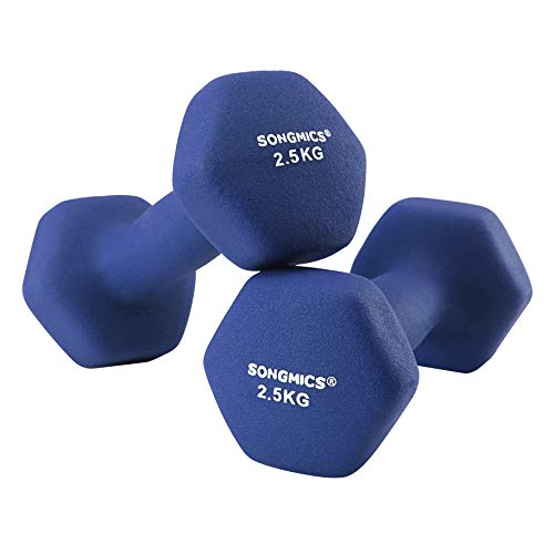 SONGMICS Kurzhanteln, 2er Set, 2.5 kg, Krafttraining, zu Hause, im BÜro, Fitnessstudio, schwarz SYL65BU