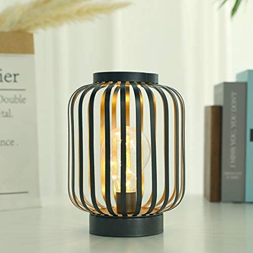 JHY DESIGN 8.7'High Metal Cage Decorative Lamp Battery Powered Cordless Warm White Light with LED...