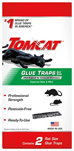 Tomcat Glue Traps Rat Size with Eugenol for Enhanced Stickiness: Contains 2 Per Package, Also...