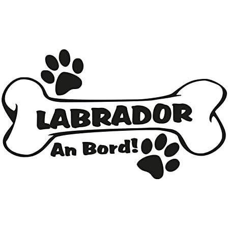 1 X Plott Aufkleber Hundeknochen Labrador An Bord Pfote Hund Dog Sticker Bone Auto