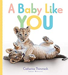 A Baby Like You by Catherine Thimmesh