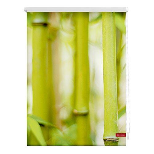 Lichtblick Rollo Klemmfix, 80 x 150 cm mit Motiv Bambus - Grün Montage ohne Bohren, moderner Sicht-und Sonnenschutz, Motivrollo, lichtdurchlässig & Blickdicht