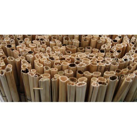 BONERVA Bambu CAÑA Completa (2X5 M)