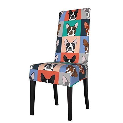 KAZOGU 2 fundas lavables para sillas de comedor Boston Terrier, fundas protectoras de asiento para sillas de fiesta, decoración