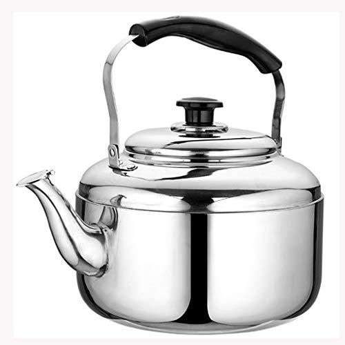 LCFF Bouilloire de santé de sifflet automatique de cuisinière à gaz 304 (Capacité : 3L)