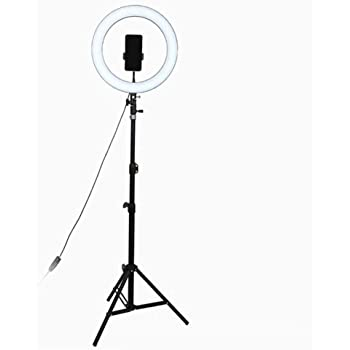 10 inch//26cm Floor Stand Dimmable LED with Tripod Stand /& Cell Phone Holder for Live Stream//Makeup//Video Recording B/&S 6//10//14-inch Ring Light Kit 16//26//36cm
