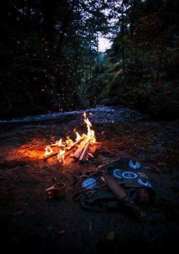 ZYDZYD Feuerschale Brennholz Wald Dunkles Feuer,30X40cm DIY malen nach Zahlen Erwachsene Kinder Leinwanddruck Wandkunst - Ohne Rahmen