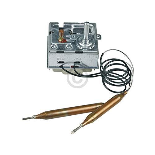 Thermostat mit STB EGO 55.60019.380 wie Stiebel-Eltron 170925 Heißwassergerät