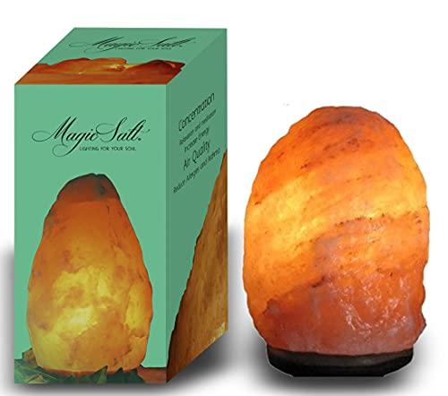 LAMARE Lampe en Cristal de Sel de l'Himalaya (4-6 kg) Entièrement naturelle avec variateur et ampoule à led