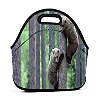 Bear Cubs Climbing 保温再利用可能おポータブル弁当箱ランチトートバッグ食事袋子供大人ユニセックス