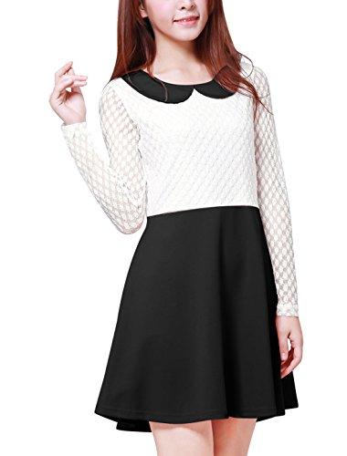 Allegra K Damen A Linie Bubikragen Panel Sheer Punkte Spitze Minikleid Kleid Schwarz M (EU 40)