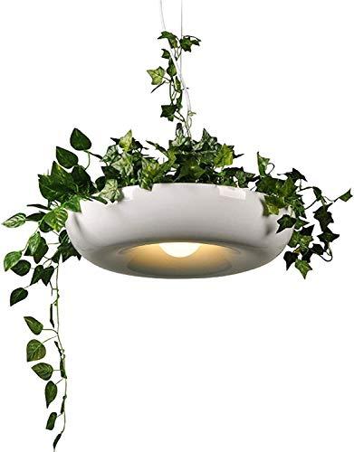 Dkdnjsk DIY Sky Garden Flower Pot Lámpara Colgante Lámpara de Comedor nórdico Oficina Moderna Planta Colgante Luces Arte Decoración para el hogar Iluminación Fixtures E27 Iluminación de restaurantes,