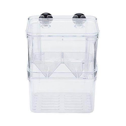 Yagote Aquarium Fish Breeder Box Hatching Incubator Isolation Box (Middle Size)