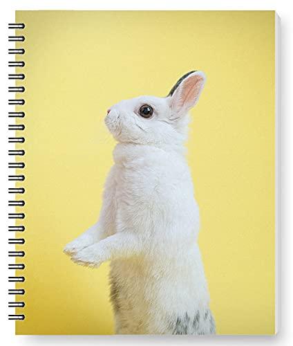 DianPrints Cuaderno espiral A5/estudiantes y oficina, lindo conejo patrón Wirebound escritura diario bloc notas papelería regalos
