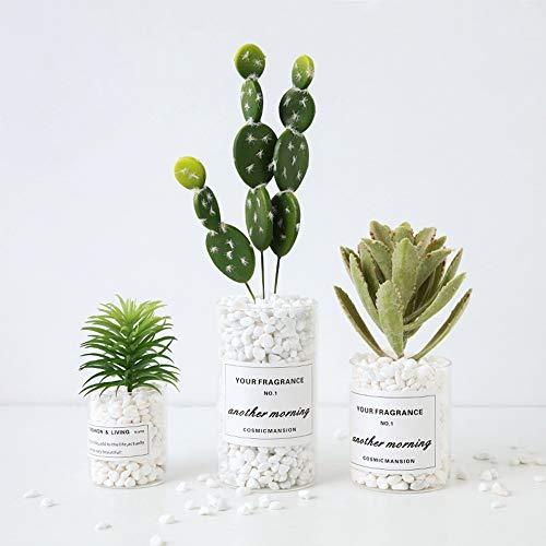 FDGH Las Plantas Artificiales - 3 Piezas Falso Cactus piña con la Taza de Cristal for el Dormitorio Sala Comedor, Artificial Flores for la decoración del hogar Bonsai de Flores Artificiales