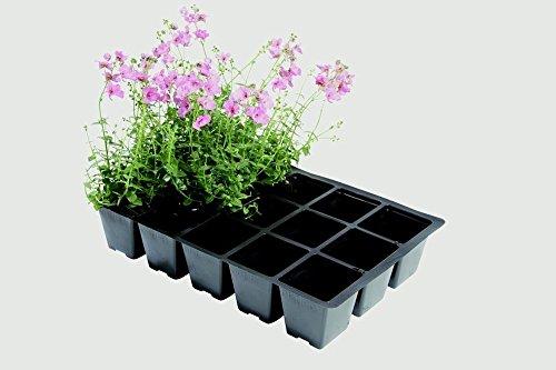 Professionnel 15 Cellules Lot de 5 inserts pour plantes Jardinage