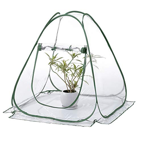 Ckssyao Mini Greenhouse Pop Up Tent PVC Grow House Clear Cover, Portable Gardening Plant Cover Flower Shelter for Garden Outdoor Backyard 70 * 70 * 80cm