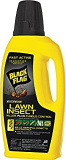 Black Flag Extreme Lawn Insect Killer + Fungus Control Concentrate, 32-Ounce