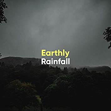 Earthly Rainfall: Wet Weather at the Marsh