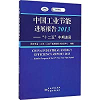 China Industrial Energy Efficiency Report 2013: Interim Progress of the 12th Five-Year Plan Period(Chinese Edition)