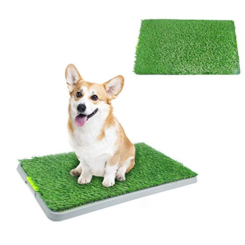 """PAWISE Dog Puppy Grass Potty Training Pad Outdoor Puppy Toilet Mat Tray Indoor Restroom for Small Cats and Dogs (27"""" x 17'') with a Replacement Grass Pad"""