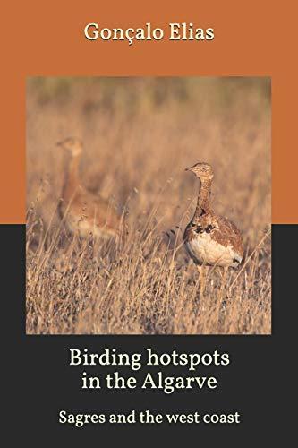 Birding hotspots in the Algarve: Sagres and the west coast