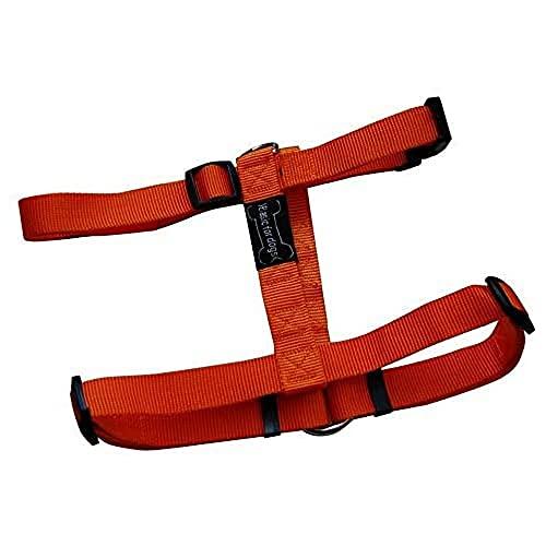 Harnais pour chien Basic Line Wouapy, Harnais Orange de 74/117 cm