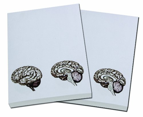 Brain Note Pad-memo Pad-notebook-100sheets-2pc in One Package
