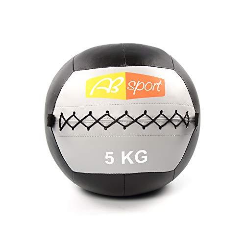 エービースポーツ(Absport) メディシンボール(ウォール用)/5KG MEBL-007 50218